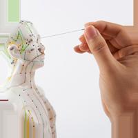 Akupunktur-kursoversikt